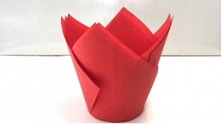 Бумажная форма Тюльпан Красный