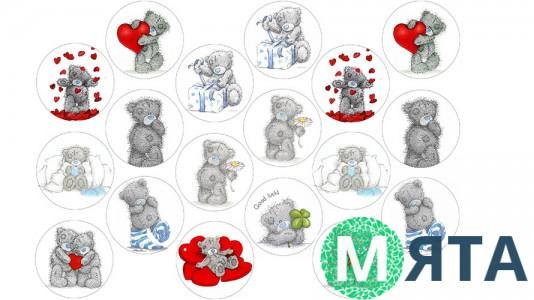 Мишки Тедди 3