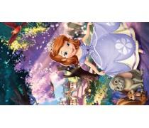 Принцесса София 6
