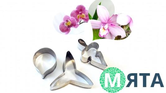 Вырубка металлическая Орхидея