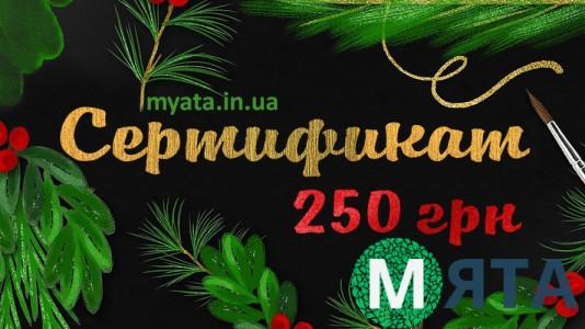 Новогодний Сертификат 250 грн