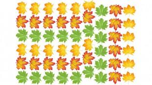 Съедобная картинка Кленовые листья