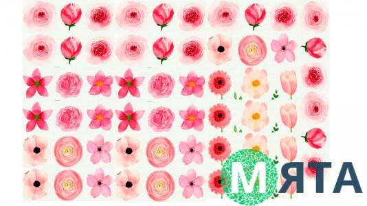Съедобная картинка Цветы 20