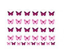 Бабочки 4
