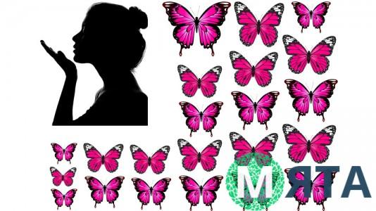 Бабочки и Девушка