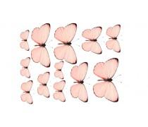 Бабочки 7