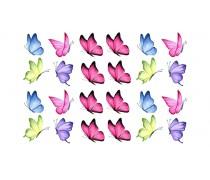 Бабочки 11