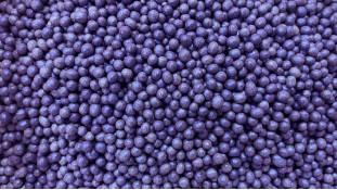 Рисовые шарики, синий неон