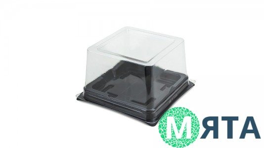 Коробка для бентоторта 13х13х8, прозрачная